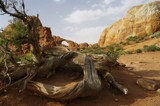 Sandstone Arch. by rriesop, photography->landscape gallery