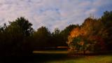 AUTUMN SHADOWS by LANJOCKEY, photography->landscape gallery