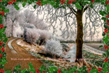 Christmas 2016 by corngrowth, holidays->christmas gallery