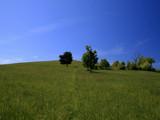 Serene Scene by Jims, Photography->Landscape gallery