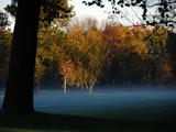 Misty Morning by wheedance, Photography->Landscape gallery