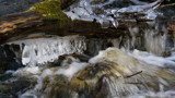 Murmuring spring creek by SEFA, photography->water gallery
