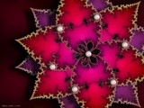 Fractal Poinsettia by nmsmith, Abstract->Fractal gallery