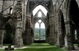 Forest of Dean - Inside Tintern Abbey by Homtail, photography->castles/ruins gallery