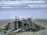 Beach Shack...Or What? by verenabloo, Photography->Shorelines gallery