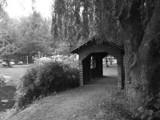 Bridge by ArcieMay, Photography->Landscape gallery