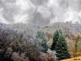 Terri's Frosty Morn by kidder, Photography->Manipulation gallery