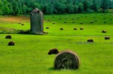Hay.....,there! by snapshooter87, photography->landscape gallery