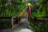 Gail Road Bridge by stylo, photography->bridges gallery