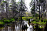 Spring Swamp by 100k_xle, Photography->Landscape gallery
