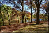 Oak Openings Metropark by Jimbobedsel, photography->landscape gallery