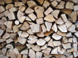 Woodlogs by pathe, Photography->General gallery