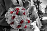 Image: Forever Bloom
