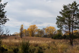 Prairie Fall by Pistos, photography->landscape gallery