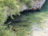 Gradishte in Ohrid Lake by koca, photography->shorelines gallery