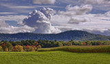 Corn Fields of Western Mass by cynlee, photography->landscape gallery