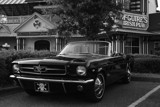 Mustang and McGuire's by elkay, Photography->Cars gallery