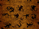 Dragonology by vladstudio, Illustrations->Digital gallery