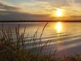 Grass & Sun by jamesbenoit, Photography->Sunset/Rise gallery