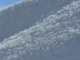 Desktop Snow by Larser, Photography->Macro gallery