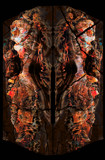 Saloon Doors Witness, Wisdom Poured, Courage Strengthened by casechaser, abstract->surrealism gallery
