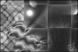 Night View in Gray Scale by verenabloo, Abstract->Fractal gallery