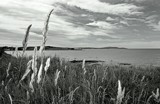 Coast by LynEve, photography->shorelines gallery