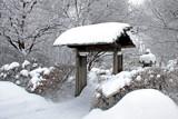 Winter Garden by Silvanus, photography->gardens gallery
