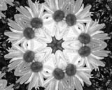 Kaleidoscope in B/W by icedancer, contests->b/w challenge gallery