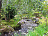 Peaceful Japanese Garden #1 by bif000, Photography->Landscape gallery