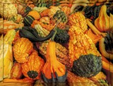 Mountain of Gourds by trixxie17, photography->nature gallery