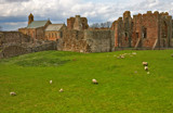lindisfarme priory and the parish church of st. mary the vir by jeenie11, Photography->Castles/Ruins gallery