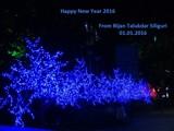 !!! Happy New Year !!! by bijantalukdar, holidays gallery