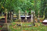 St Peters, Prestbury - Churchyard by braces, Photography->Places of worship gallery