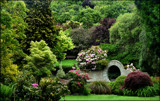 Secluded Bench by LynEve, photography->gardens gallery