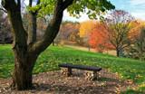 Hilltop Rest by Silvanus, photography->landscape gallery