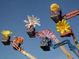 Flower cranes by Paul_Gerritsen, Photography->Manipulation gallery