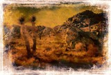 Desert Country Mirrage by snapshooter87, photography->manipulation gallery