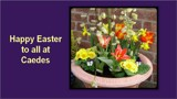 Happy Easter by TheWhisperer, Holidays gallery