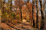 A Bright, Sunshiny Day by Jimbobedsel, Photography->Landscape gallery