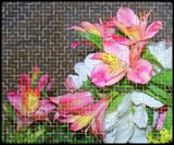 Flowery Mosaic by TheWhisperer, photography->manipulation gallery