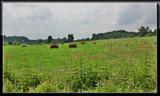 Beautiful Ohio 3 by Jimbobedsel, Photography->Landscape gallery