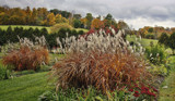 More of the Autumn Garden by cynlee, photography->gardens gallery