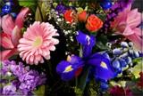 Birthday Bouquet by trixxie17, photography->flowers gallery