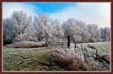 Winter In Zeeland 2009 (14) by corngrowth, Photography->Landscape gallery