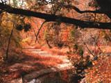Red Gulch by jojomercury, Photography->Landscape gallery