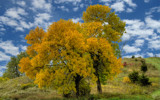 Autumn Approaches by 0930_23, photography->landscape gallery