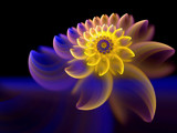 Moonlight Bloom - Happy Mother's Day by jswgpb, Abstract->Fractal gallery