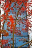 Fall Colors by LakeMichigan, photography->architecture gallery