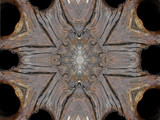 Woodwork number 4 by rvdb, photography->manipulation gallery